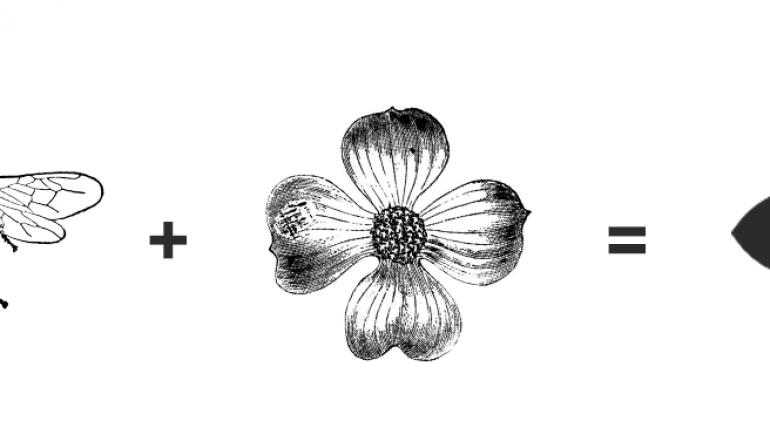 Logotipo sukūrimo istorija